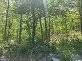 0 Mountain Falls Trail - Photo 2