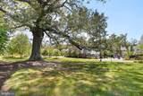 4426 George Mason Boulevard - Photo 66