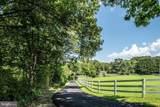 8116 Rondelay Lane - Photo 4