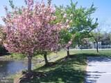 30611 Cedar Neck Road - Photo 31