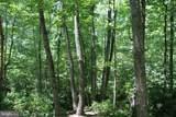 Woodman Trail - Photo 4
