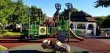 7967 Crescent Park Drive - Photo 26