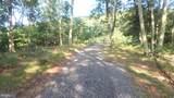 342 Nathaniel Mountain Drive - Photo 12