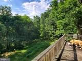 Bear Garden Trail - Photo 18