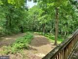 Bear Garden Trail - Photo 19