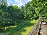 Bear Garden Trail - Photo 22