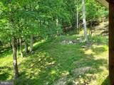 Bear Garden Trail - Photo 25