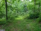 Bear Garden Trail - Photo 49