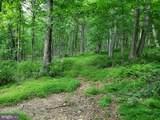Bear Garden Trail - Photo 52
