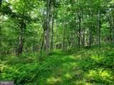 Bear Garden Trail - Photo 53