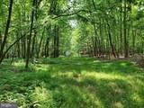 Bear Garden Trail - Photo 54