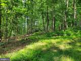 Bear Garden Trail - Photo 55