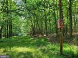 Bear Garden Trail - Photo 56