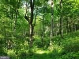 Bear Garden Trail - Photo 57