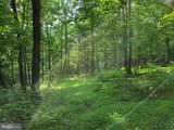 Bear Garden Trail - Photo 58