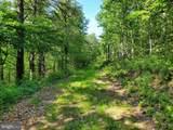 Bear Garden Trail - Photo 59