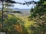 Bear Garden Trail - Photo 6