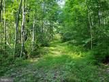 Bear Garden Trail - Photo 61