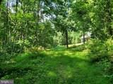 Bear Garden Trail - Photo 63