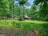 Bear Garden Trail - Photo 64