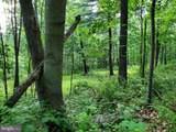 Bear Garden Trail - Photo 65