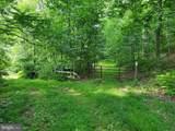 Bear Garden Trail - Photo 66