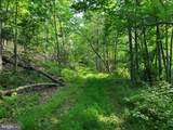 Bear Garden Trail - Photo 68