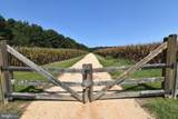 17211 Bramble Way - Photo 5