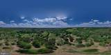 1845 Eagle Farms Road - Photo 16