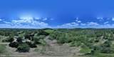 1845 Eagle Farms Road - Photo 17