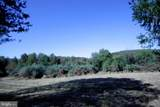 1845 Eagle Farms Road - Photo 8