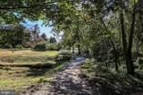 28824 Jasper Lane - Photo 41