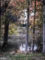 27872 Dixon Creek Lane - Photo 2