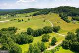 16439 Holly Hill Farm Lane - Photo 3