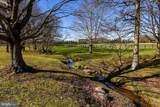 22956 Carters Farm Lane - Photo 134