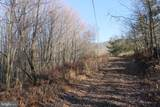 27.53 Acres Hickory Tree Rd - Photo 3