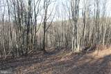 27.53 Acres Hickory Tree Rd - Photo 6