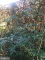 Little - Photo 14