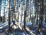 3190 Grassy Ridge - Photo 42