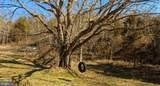 343 Burnt Tree Way - Photo 16