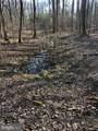 3440 Bull Run Mountain - Photo 10