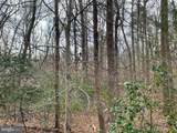 Delphinium Trail - Photo 2