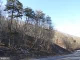 239 ACRES Paw Paw Road - Photo 8
