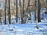 43 Deer Springs Ln Lane - Photo 2