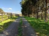 Marble Hill Lane - Photo 9