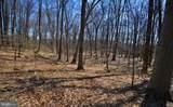 100 Timber Ridge Lane - Photo 9