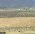 277 & 241 Wine Barrel Lane - Photo 34