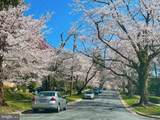 4007 Ingersol Drive - Photo 38
