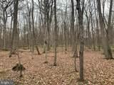 Pump Run Trail - Photo 2