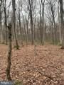 Pump Run Trail - Photo 4